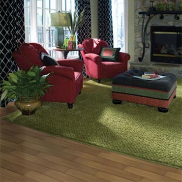 Masland Contemporary Rugs